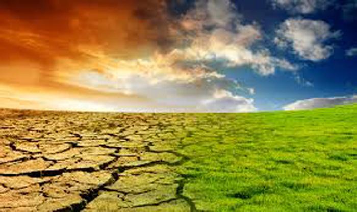 """15/11: nuove strategie per """"guarire"""" il pianeta"""