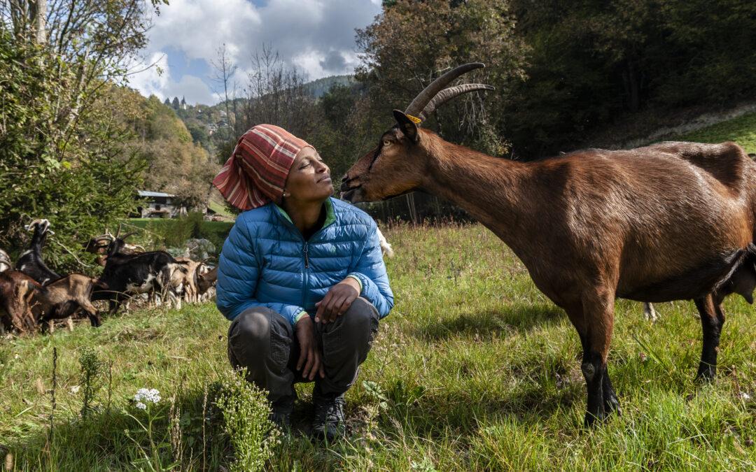 Pascoli e libertà, omaggio ad Agitu e a tutte le pastore del mondo